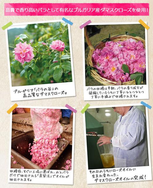 rosedress_d_05.jpg